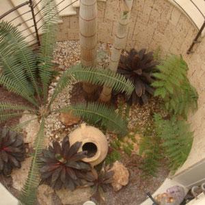 Jardinet décoratif