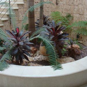 Beau jardinet décoratif