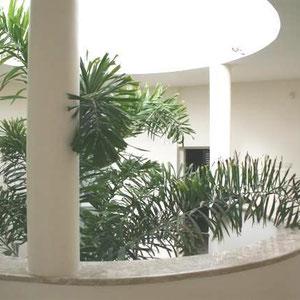 Jardinet décoratif  intérieur
