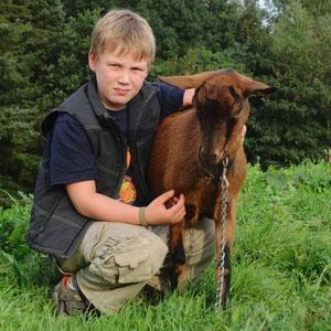 Lucas hat mit Leo Freundschaft geschlossen. Alle Ziegen haben bei uns Namen , es ist eine richtig große Ziegenfamilie