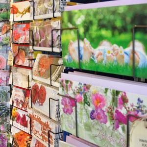 Die Bandbreite an Glückwunschkarten und Postkarten lädt zumstöbern ein