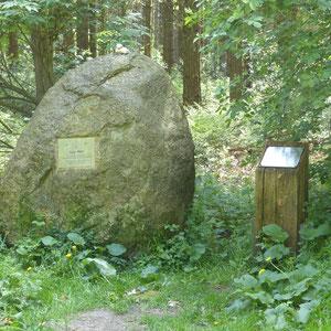 Naturdenkmal mit Tafel
