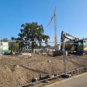 Altes Gymnasium abgerissen- Neue Wohnbebauung