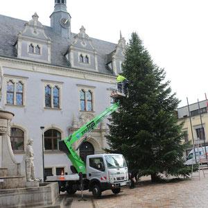 Weihnachtsbaum wird gestellt