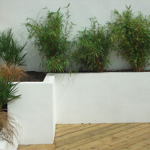 lovely contrast of white rendered wall with the deck