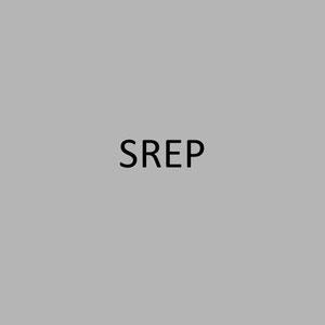 <h1> SREP