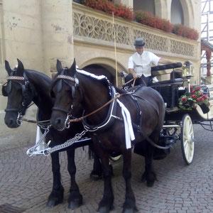 Hochzeitskutsche vor dem Rathaus