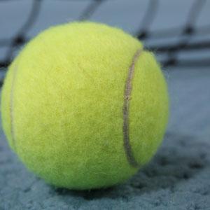 Willkommen in der Wankendorfer Tennishalle