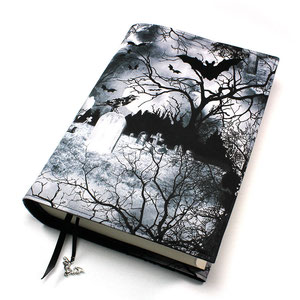 Buchhülle Ravens Grey - leider nicht mehr verfügbar
