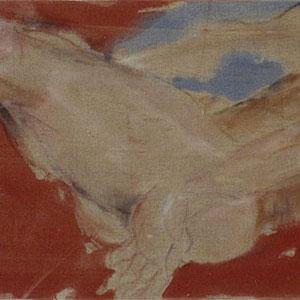 Etude d'après Brook Labrenz, 2005, pastel et colle de peau colorée, 50 x 150 xm, Collection particulière, France.