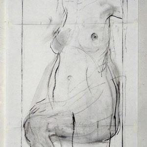 素描,三页纸的组合,2009,炭笔于素描纸,150 x 65 cm
