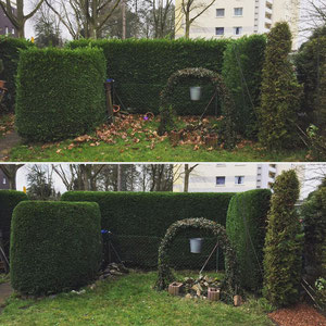 Gartengestaltung in Marl - Gartenpflege