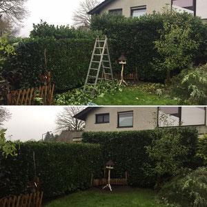 Gartenpflege in Herten - Instandsetzung eines Gartens.