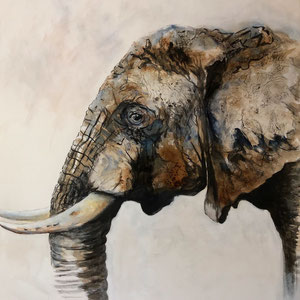 Elefant #3,  Acryl, Kaffee und Kohle auf Leinwand, 100x100cm      - Preis auf Anfrage
