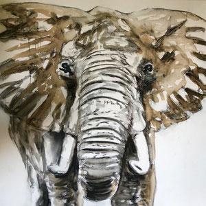 Elefant #2,  Acryl, Kaffee und Kohle auf Leinwand, 100x100cm    - Preis auf Anfrage