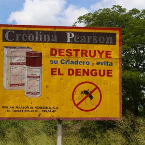 Gebiet für Dengue Fieber
