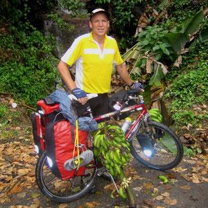 Bananen Transport