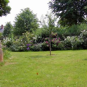Die Rasenfläche, Gartenliegen stehen auf Wusch für Sie bereit