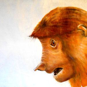 Nasenaffe, Borneo,  Acryl auf Papier, 40 x 40 cm