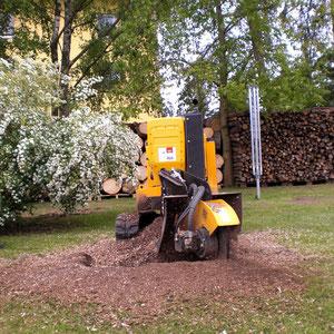 Die Stockfräse schont den Rasen und die Sträucher