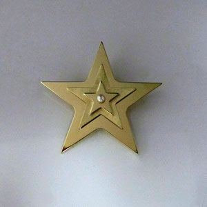 PB 18 - 14K yellow gold star pin with pearl center.  Made for the Virginia Nurses Association