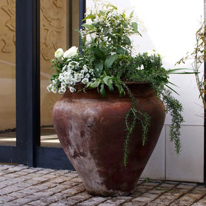 New arrangement for the pot at the entrance