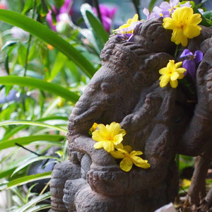 Ganesha loves flowers :)
