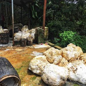 Umgebung von Kon Tum – streng riechende Klumpen von geerntetem Naturkautschuk. Gearbeitet & geerntet wird der Kautschuk in der Nacht.