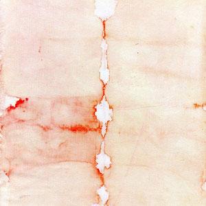"""""""Pezzuola"""" fotografata dieci giorni dopo l'uso. Dal terzo giorno era asciutta; malgrado ciò, il sangue ha cominciato ad infiltrarsi nella zona della sierosità, spingendosi verso la periferia del lino. Si noti il colore meno vivo del sangue"""
