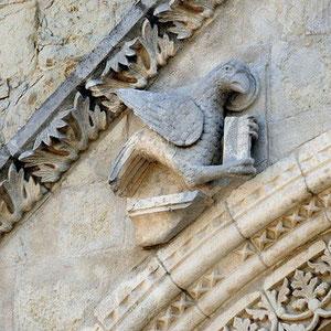 Aquila (Vangelo di Giovanni) [foto F. Valente]