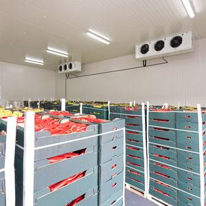 Kühlsysteme Kiel