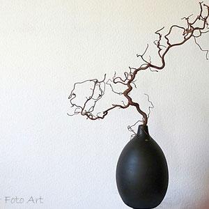 der Zweig