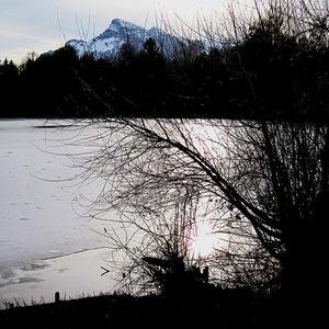 Teich mit Untersberg