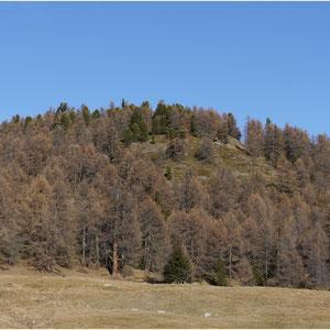 Moosalpe-Törbel 13.11.2011