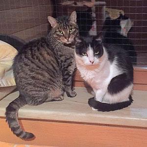 Mary mit ihrem Freund Samy