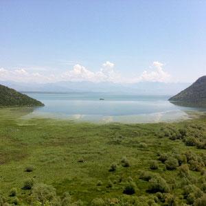 Was für ein See! Shkoder-See zwischen Montenegro und Albanien