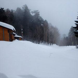 大平山荘横。夏に南アルプス林道バスが走る道も雪だらけ。