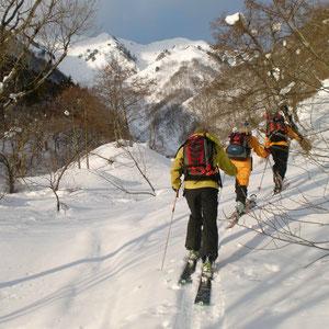 白谷の林道を登る