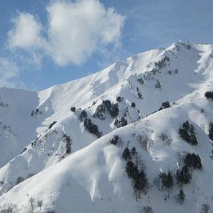 野谷荘司への稜線からフォールラインが