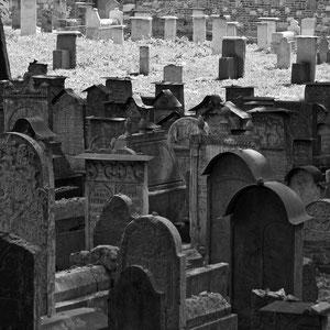 ehemaliger jüdischer Friedhof in Krakau