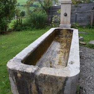 Brunnensanierung, André Iseli Stein- u. Bildhauerwerkstatt, Wimmis