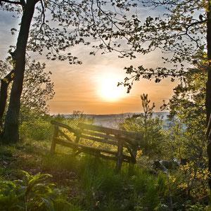 Sonnenuntergang Wernerwald