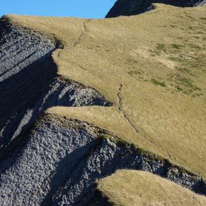 Pécloz (Bauges, 73) : la crête de l'Arpette, vue du collet - AU BOUT DES PIEDS