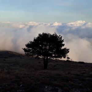 Le Cheiron : au-dessus de Gourbel - AU BOUT DES PIEDS