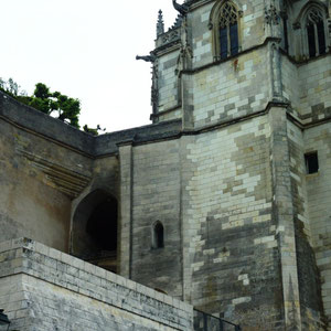 Loire à vélo : de Tours à Orléans : Amboise - Au Bout des Pieds