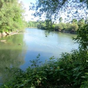 Grand-Morin : Condé Sainte Libiaire, l'embouchure dans la Marne - Au Bout des Pieds