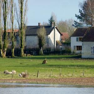 l'Aubetin, Courtacon - AU BOUT DES PIEDS