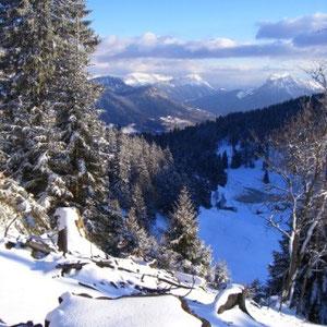 Semnoz (Bauges, 74) : descente sur le col de Leschaux - AU BOUT DES PIEDS
