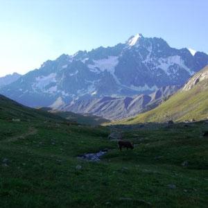 Ecrins : Montagne des Agneaux (?) - AU BOUT DES PIEDS