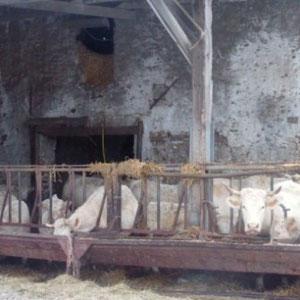 Grand-Morin : Cormeaux - Au Bout des Pieds